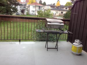 Our lonely, neglected grill.