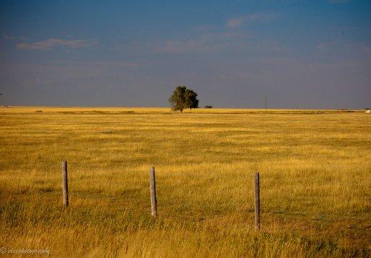 Rural_Alberta,_Canada.jpg